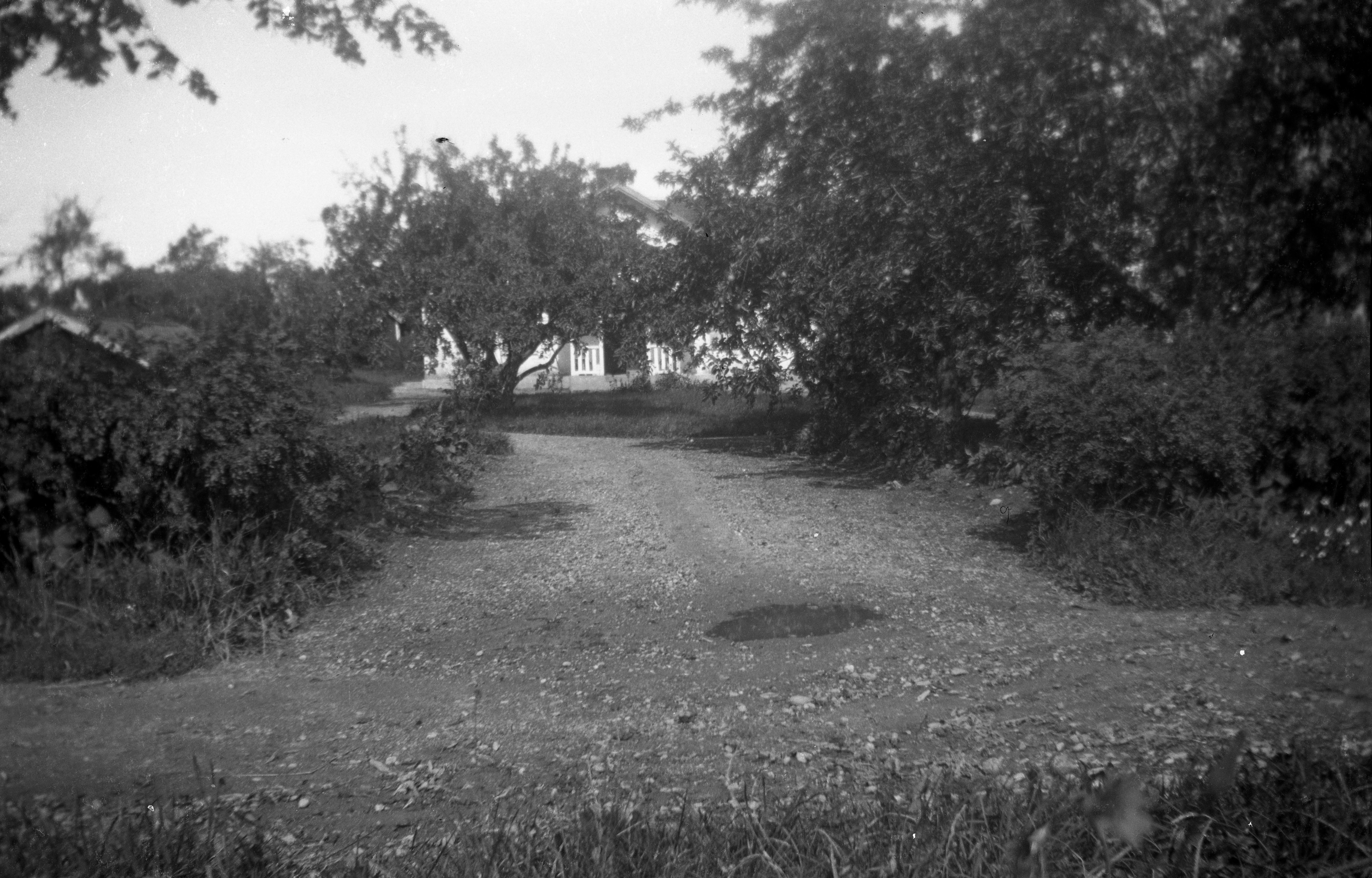 Tegneby Södergard trädgård